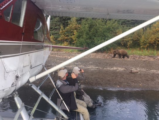 Fishing and seeing Grizzlies is the plan for the day