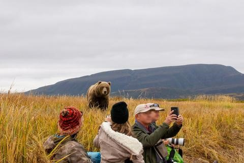 Good action on a Alaska Grizzly Safaris trip.